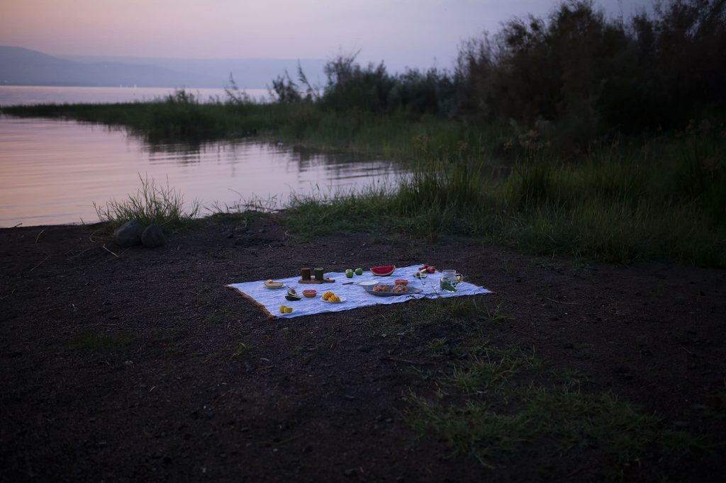 picnic with challah and spreads