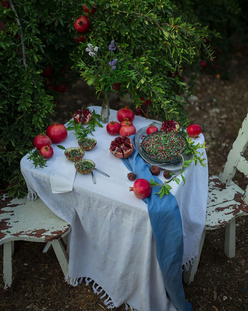 a picnic with pomegranate tabbouleh